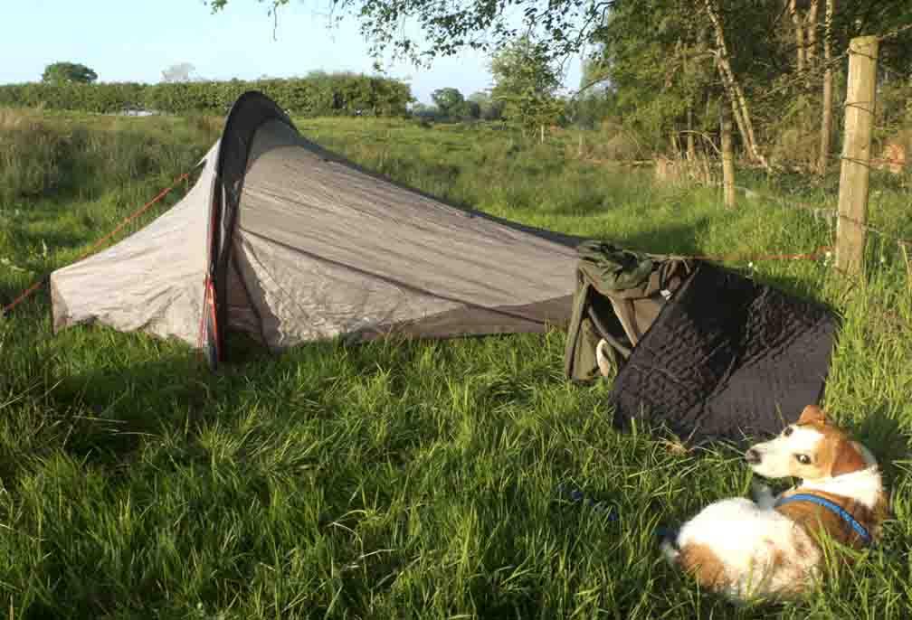 jasper and tent